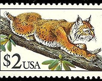 One (1) vintage unused postage stamp - Bobcat // 2 dollar stamp // Face 2.00