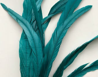 ROOSTER TAIL FEATHERS X - long  / Oasis Green   / 216