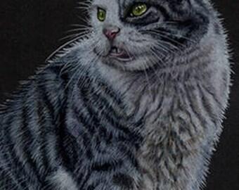 Tabby Cat 2 Art Note Card