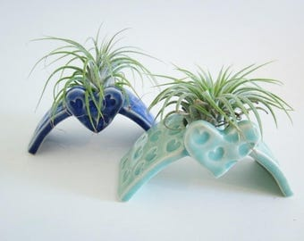 Air plant planter, Cubicle decor, home decor Desk decor, Desk planter gift,