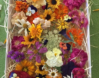 200 Dried Assorted Flowers, Dried Flowers, Table Decor, Wedding Confetti, Centerpieces, Wildflowers, Craft Supply, Daisy, Wedding Decoration