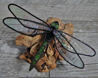 Stained Glass Dragonfly with Tree Burl Base