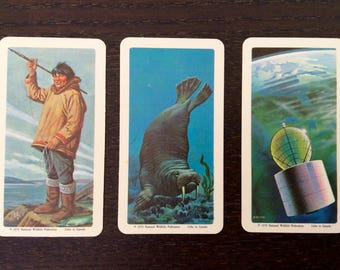Vintage Red Rose Tea Card - 3 Collectible Cards from The Arctic Serie - Eskimo Fisherman, Walrus, Anik