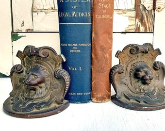 Pair of Elegant Vintage Lion Bookends Heavy Bronzed Metal Beautiful Embossed Floral Motif on Back
