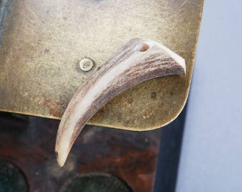 Genuine wild deer horn with hole, pendant
