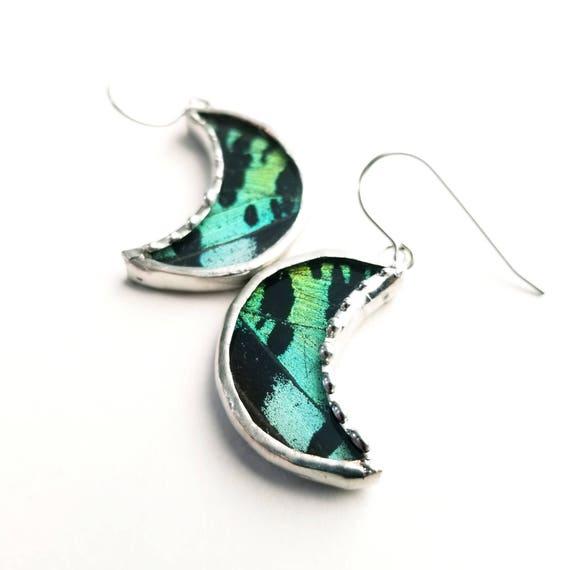 Butterfly Earrings / Real Butterfly Wing Jewelry