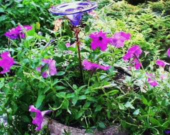 CONTAINER GARDENING, Butterfly Feeder, stained glass, VIOLET Iridescent, copper, garden stake, retirement gift, Patio Gardening