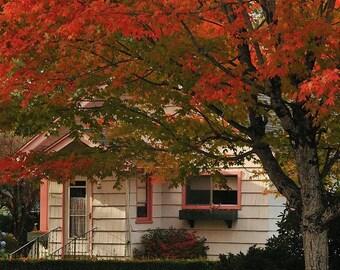 Old fashion neighborhood Fall photo, Autumn decor, Wall decor, Vintage design, Cottage decor, Maple Tree, Old Neighborhood design