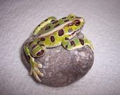 leopard frog / hand sculpted frog / rock sculpture / painted frog / frog paperweight / frog knick knack / valentine gift / unique gift