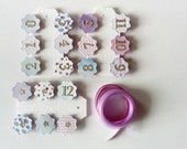 Photo Banner Kit - 0 - 12 Months Milestone Banner - First Birthday - Purple, Lilac, Blue, Gold / Silver - Mini Clothes Pegs & Ribbon
