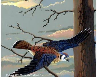 American Kestrel Original Painting Watercolor Birds Sparrow Hawk Wall Decor Cabin Decor Gifts Office Decor Art and Collectibles