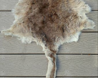 Wallaby Pelt/Hide Vintage Leather