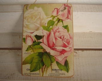 shabby chic,pink & white roses,seed packet image,wooden decorative hanging tag