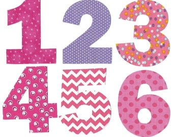 Iron on baby's first year girl monthly iron on numbers for months 1-12