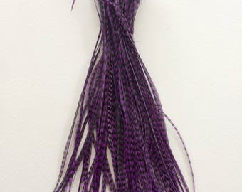 100 - 7 Inch Metz Grizzly Rooster Feathers - Dyed Purple