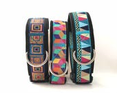 Padded + Adjustable Dog Collar, brightly colored boy + girl dog collar