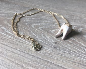 Tooth Necklace 1