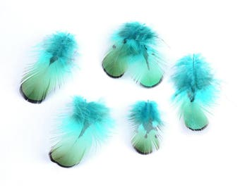 Feathers for creating Acessories 40 to 80 mm approx, necklaces, necklaces and jewelry, pendants, diy customization