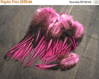 CLOSING OUT SALE 89 Hot Pink Black Laced Rooster Saddle Feathers ~ Cruelty Free