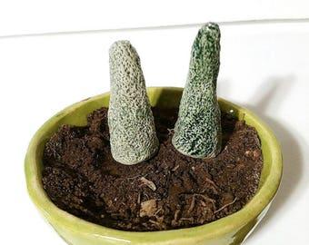 Little Trees, Ceramic Tree, Aquarium Accessory, Ceramic Garden Stake, Fairy Garden Accessory