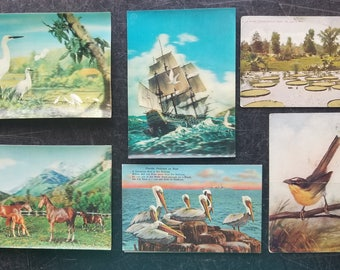 Vintage Postcards Lot of 6