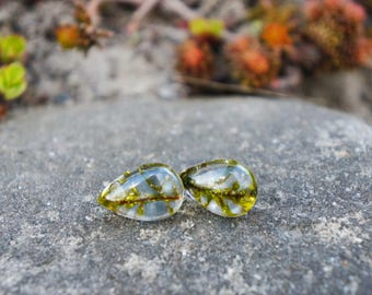 Real moss tiny earrings Rustic earrings Drop moss earrings green Gift for her Rustic wedding earrings. Woodland Globe tiny moss earrings