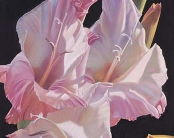 Pink Gladiolus Art, Romantic Art, Shabby Chic Art, Pink Decor