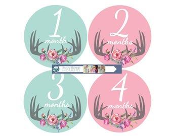 Baby Milestones Stickers, Baby Month Stickers,  Month by Month,  Baby Shower Gift, New Baby Gift, Mint Pink,  Vintage Floral Deer Antlers,