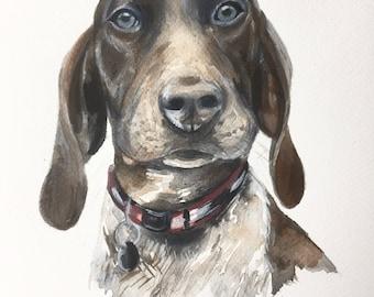 Custom pet portrait, dog, dog portrait, cat portrait, custom pet painting, animal painting, dog cat watercolor, watercolour, dog portrait