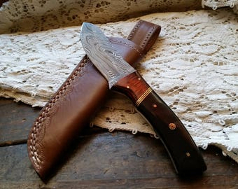 """Damascus Fixed Blade, 8 5/8"""" Damascus Steel Knife, Cocobolo Wood with Buffalo Horn Handle, Leather Sheath, Full Tang, Big Game Skinner"""