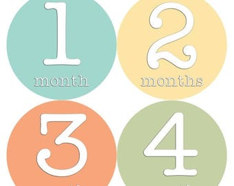 Monthly Stickers Monthly Baby Stickers Baby Month Milestone Stickers Baby Month Stickers Month to Month Bodysuit Stickers Shower Gift 254
