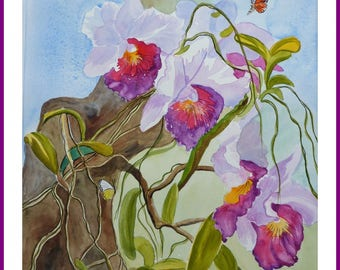 Watercolor - Butterfly and wild orchids