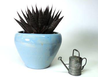 Zanesville Stoneware Company Small Planter or Vase Vintage Mid Century