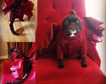 Game of Thrones Inspired Dragon Costume, Game of Thrones, Dragon Costume, Dog Dragon Costume, Realistic Dragon Costume, Dog Costume, Dog