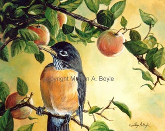 PRINT-ROBIN in APPLE Tree; backyard bird, wall art, 8 x 10 inches, on laser paper,