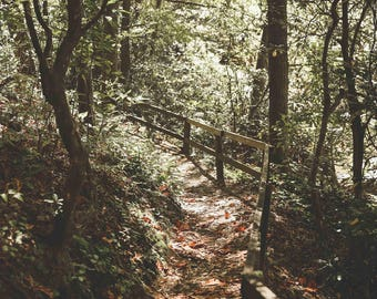 Wooden Bridge Path - Pisgah National Forest North Carolina Mountains Nature Water Fine Art Photography Print