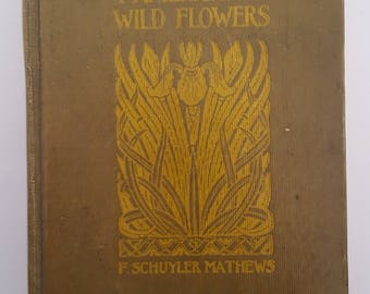 Vintage 1927 printing Field Book of American Wildflowers by F . Schuyler Mathews, by Putnam, 30 color plates and 300 illustrations