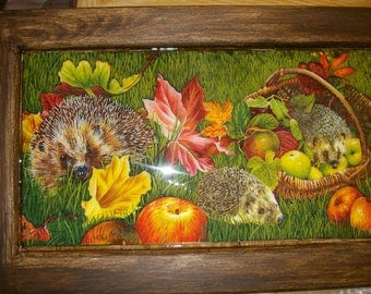 Large frame family ' hedgehogs '