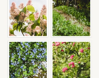 """Versailles, France Travel Photography, """"Marie Antoinette's Flowers"""", Set of 4 Square Fine Art Prints, Gallery Wall, Home Decor, Gift"""