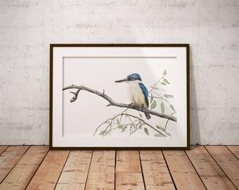 A3 Sacred Kingfisher Art Print - Australian Bird Print