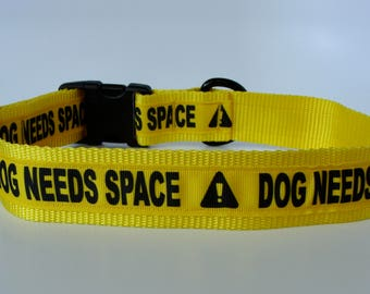 """Large Dog Yellow """"Dog Needs Space"""" Caution - 1.5"""" wide Collar - Ready to Ship!"""