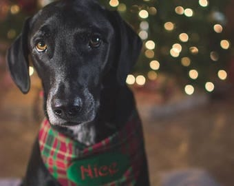 Naughty & Nice Holiday Plaid Dog Bandana with a Jingle Bell