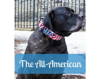 American Flag Dog Collars for Girls or Boys, Big Large Thick Dog Collar, 2in Wide Buckle Dog Collar by LaVilla