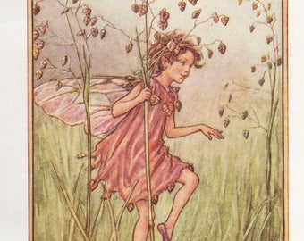 Flower Fairies: The TOTTER-GRASS FAIRY Vintage Print c1930 by Cicely Mary Barker