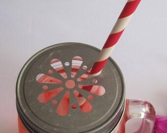 Mason Jar Lids, Mason Lids, Jar Lids, Lids for Straws, Lids for Flowers, Pewter Color 6/pack