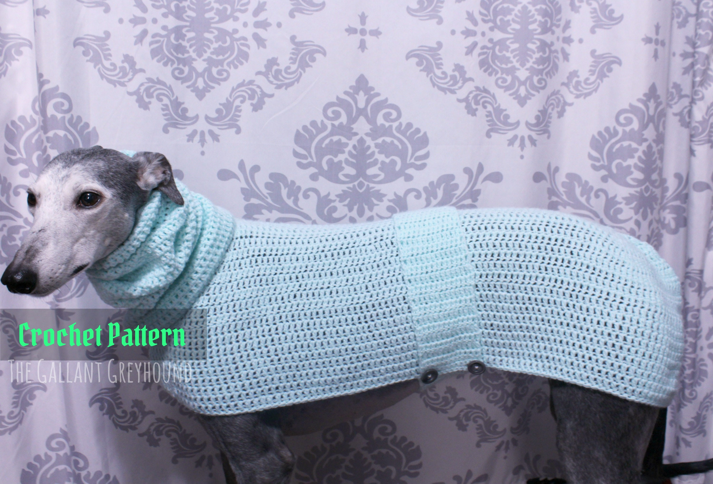 Cozy pastel greyhound sweater crochet pattern pattern only zoom bankloansurffo Images