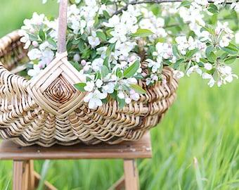 Oak/Willow Harvest Basket