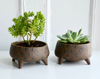 Small Succulent Planters - Dark Brown