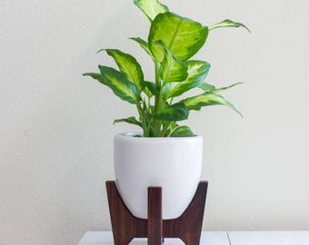 "FREE SHIPPING: Tabletop Bell Mid-century Modern Planter, Plant Stand with 5.5"" Bell Ceramic - Walnut"