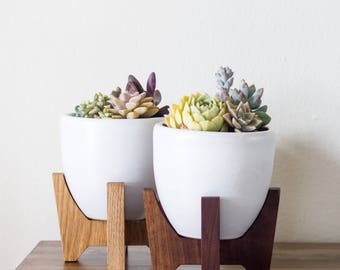 "Tabletop Bell Mid-century Modern Planter, Plant Stand with 5.5"" Bell Ceramic - Walnut"